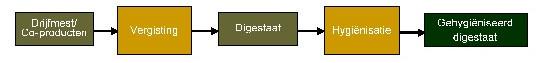 processchema dig-Hyg