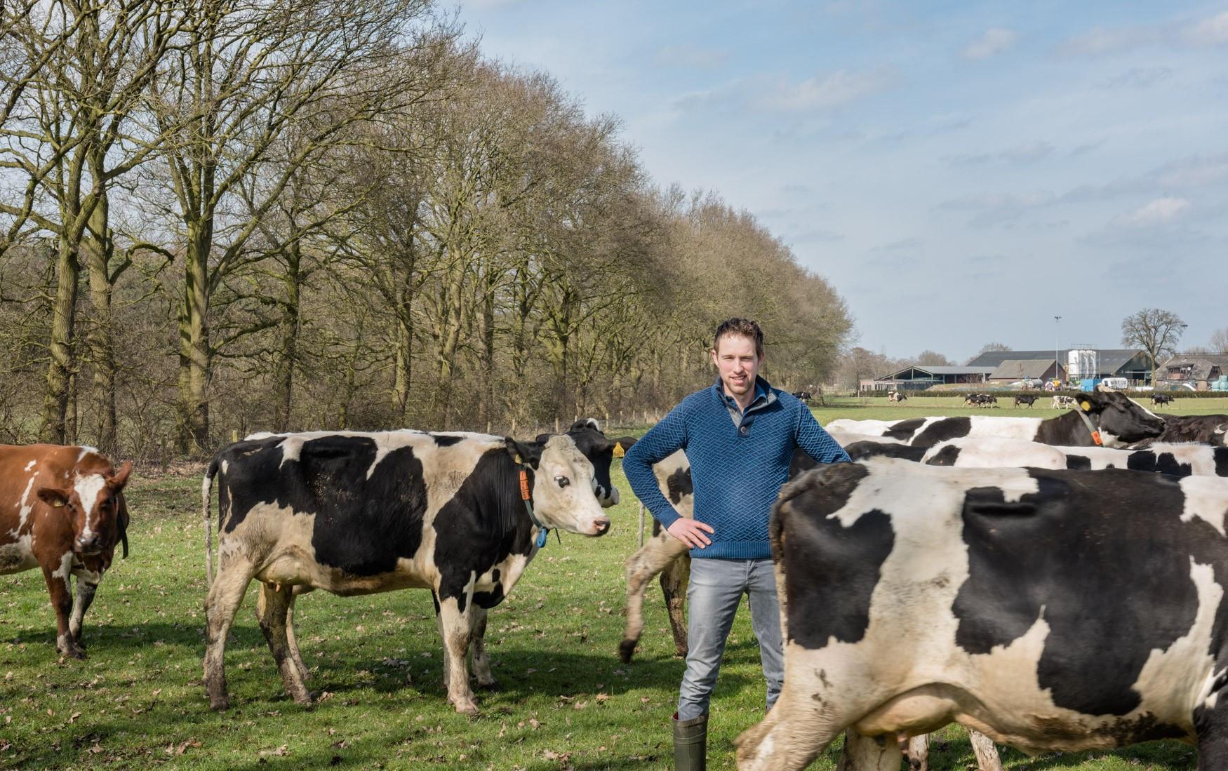 Aldi en Albert Heijn gaan mee in duurzame melk – actie Milieudefensie
